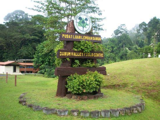 Danum Valley Field Center