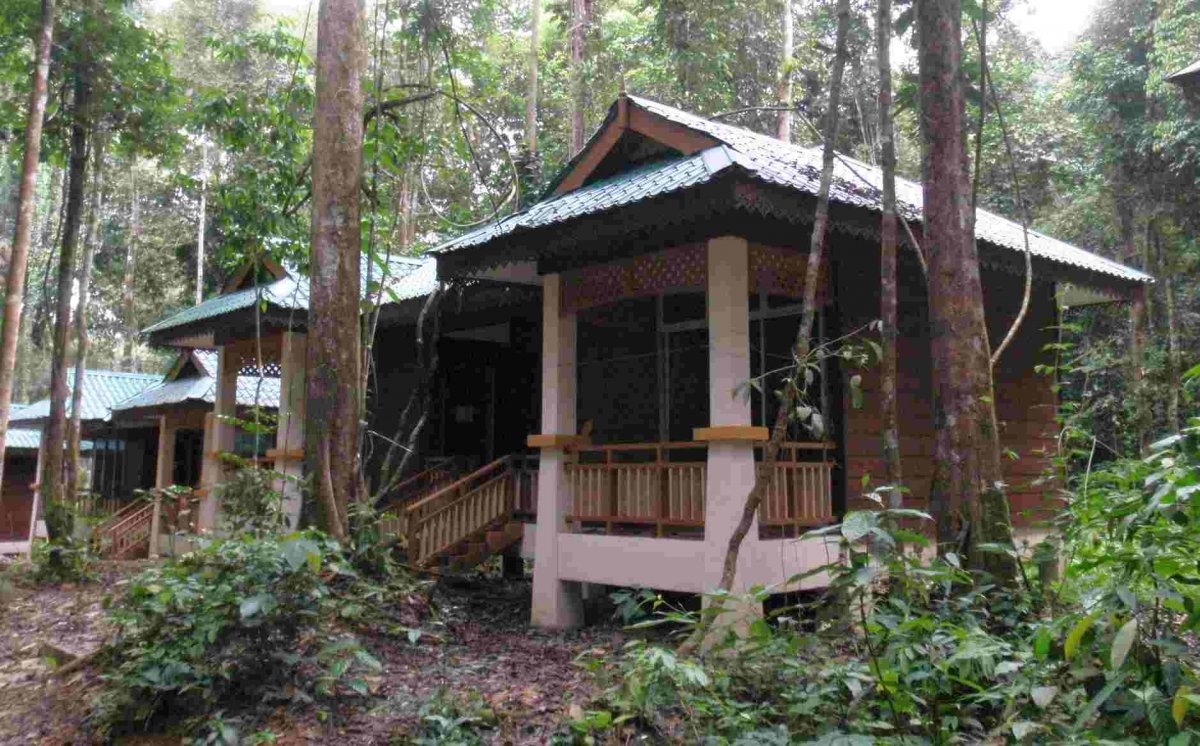 Sedim Rainforest Chalets