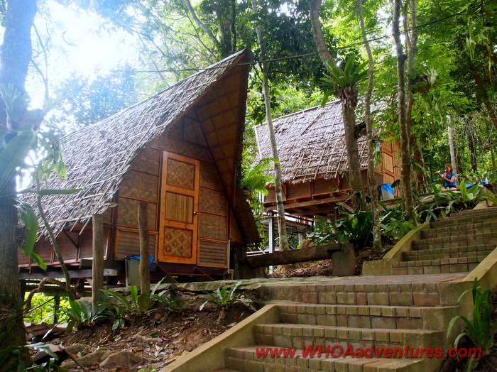 Royal Belum Jungle In The Pristine Tropical Rainforest Of