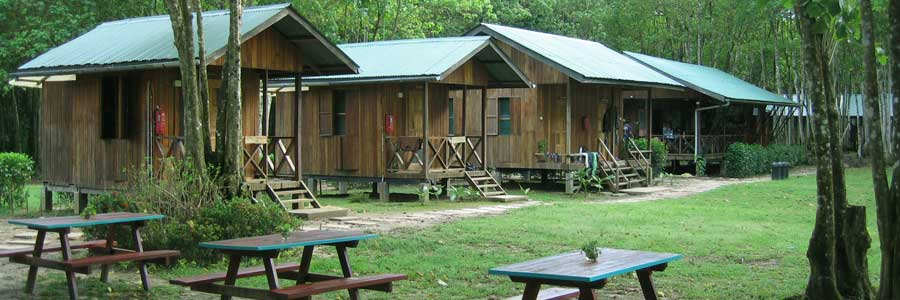 Nature Lodge Kinabatangan: Civet Cabin and Common Dining Area at far right